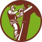 arborist-tree-surgeon-trimmer-pruner_zkaUXDIu_L